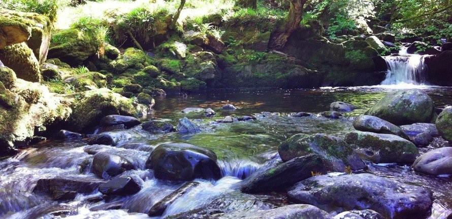 hiking water stream